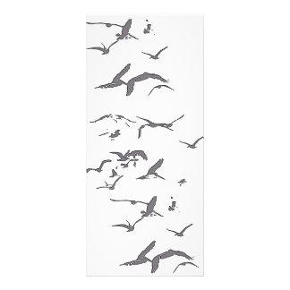 Brown Pelican Birds Wildlife Animals Customized Rack Card