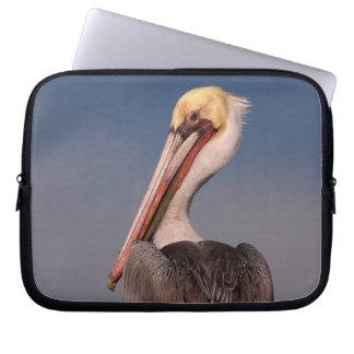 Brown Pelican Birds Wildlife Animals Laptop Sleeve