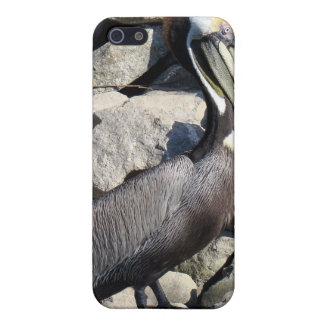 Brown Pelican iPhone 5 Cases