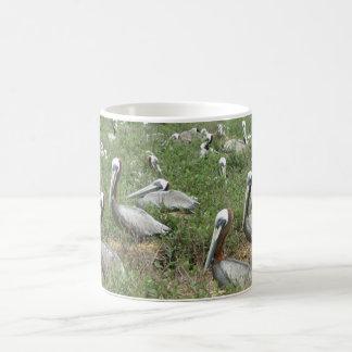 Brown Pelican Nesting Spot Coffee Mugs