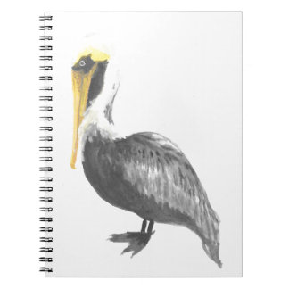Brown Pelican Notebooks