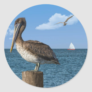 Brown Pelican on a Post Sticker