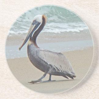 Brown Pelican on Beach Coaster