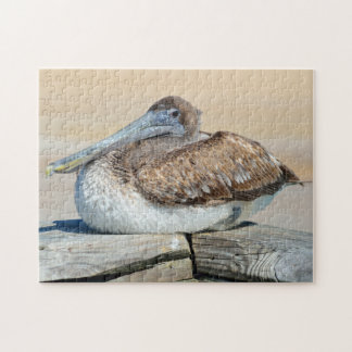 Brown Pelicans on a dock Jigsaw Puzzle
