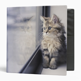 Brown Persian Kitten Looking Out Window Vinyl Binder