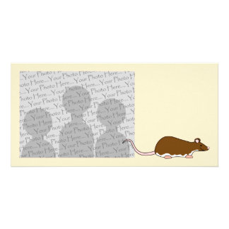 Brown Pet Rat. Berkshire, White Belly. Customized Photo Card