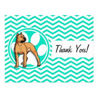 Brown Pitbull Aqua Green Chevron Post Card
