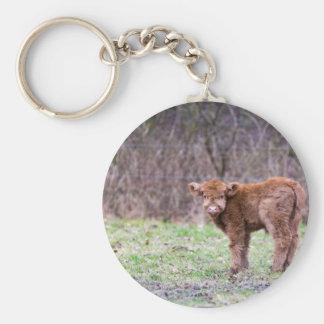 Brown scottish highlander calf in meadow basic round button keychain