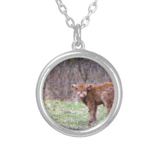 Brown scottish highlander calf in meadow silver plated necklace