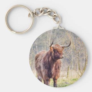 Brown scottish highlander cow standing in spring basic round button keychain