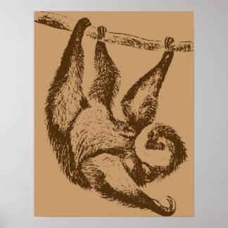 Brown Sloth Poster
