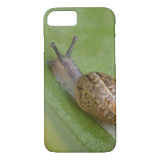 Brown snail on dew covered leaf iPhone 7 case