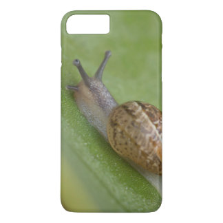 Brown snail on dew covered leaf iPhone 7 plus case