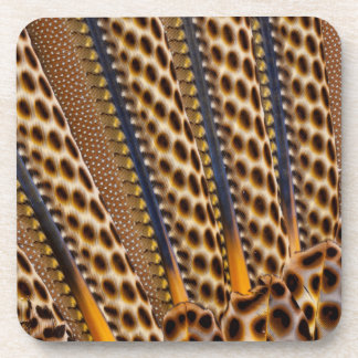 Brown spotted pheasant feather coaster