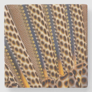 Brown spotted pheasant feather stone coaster