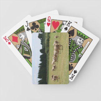 Brown Swiss playing cards, green Poker Deck