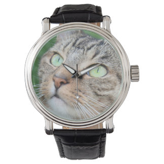 Brown tabby cat face wristwatches
