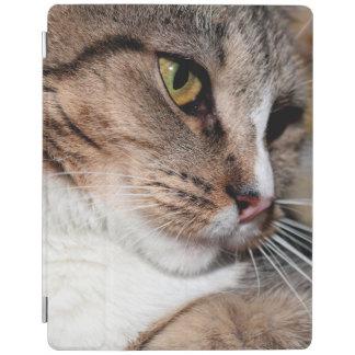 BROWN TABBY CAT IPAD CASE iPad COVER