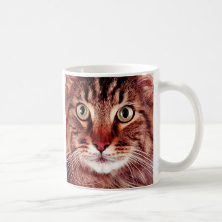 Brown Tabby Cat Mug