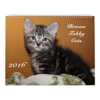 BROWN TABBY CATS 2016 CALENDAR
