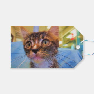 Brown Tabby Painting Pack Of Gift Tags