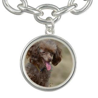 Brown Toy Poodle Charm Bracelet