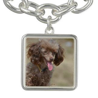 Brown Toy Poodle Charm Bracelets