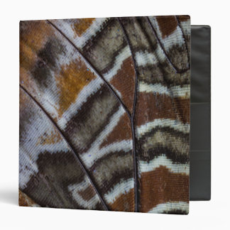 Brown tropical butterfly close-up binder