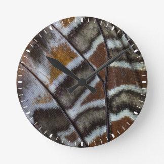Brown tropical butterfly close-up clock