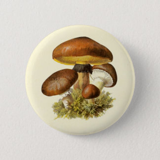 Brown Vintage Mushroom 2 Inch Round Button