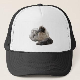 Brown Waved Albatross Trucker Hat