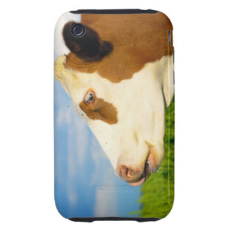 Brown white cow looking straight ahead tough iPhone 3 cases