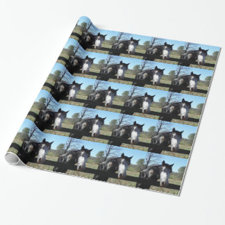 Brown &White, Painted Horse, bright blue sky Wrapping Paper