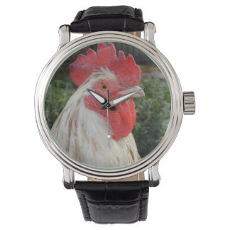 Brown White Rooster Face, Mens Leather Watch. Watch
