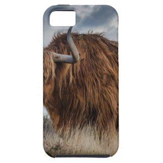 Brown Yak on Green and Brown Grass Field Case For The iPhone 5