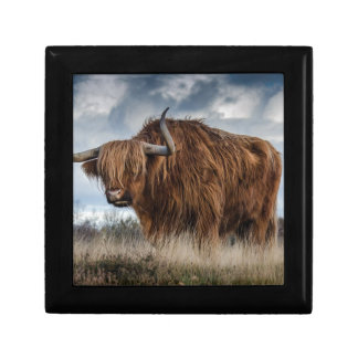 Brown Yak on Green and Brown Grass Field Gift Box