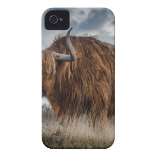 Brown Yak on Green and Brown Grass Field iPhone 4 Case