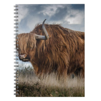 Brown Yak on Green and Brown Grass Field Notebook