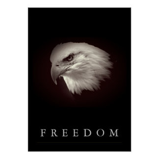 Brownish Freedom American Eagle Face Patriotic Poster