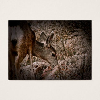 Browsing Deer Wildlife Business Card