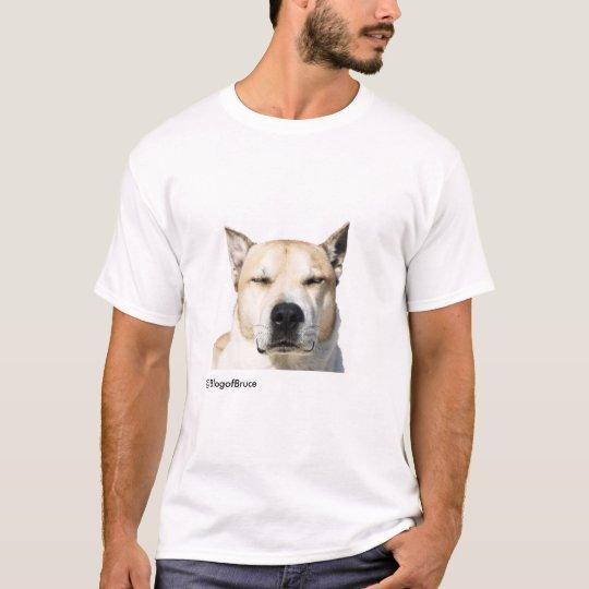 Bruce's t-shirt