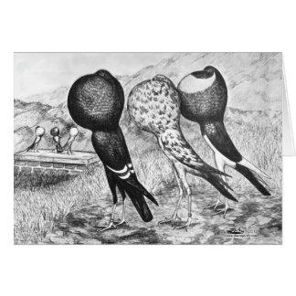 Brunner Pouter Pigeons Card