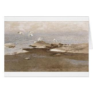 Bruno Liljefors - Gulls @ Beach 1909 Sea Seagull Card