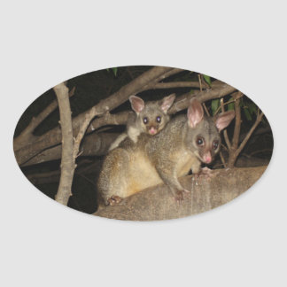 Brushtail Possums Oval Sticker