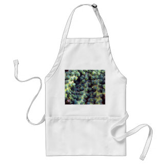 Brussel Sprouts Standard Apron