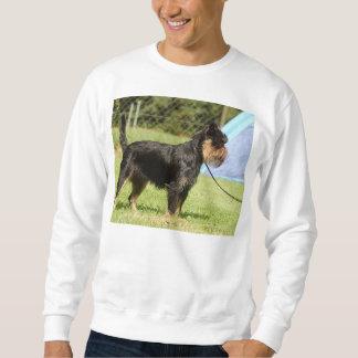 brussels griffon full sweatshirt