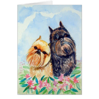 Brussels Griffon Greeting Cards