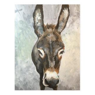 Brutus Miniature Donkey Post Card