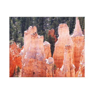 Bryce Canyon Hoodoos Canvas Wall Art