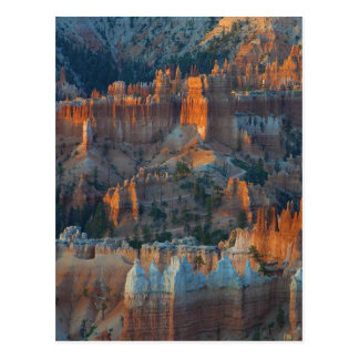 Bryce Canyon National Park 2 Postcard